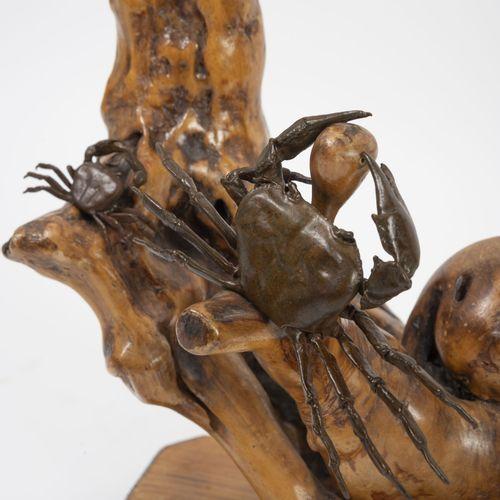 JAPON, XXème siècle Arbre aux crabes.  Racine polie sur socle rectangulaire, ani…