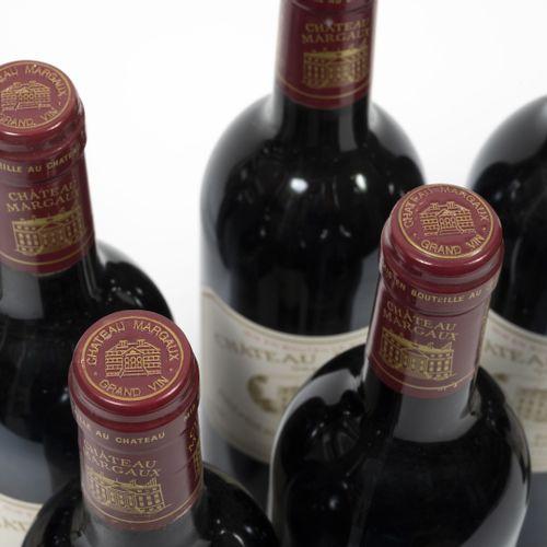 CHÂTEAU MARGAUX Lotto di 9 bottiglie, 1995.  Buone condizioni.  Piccole macchie …