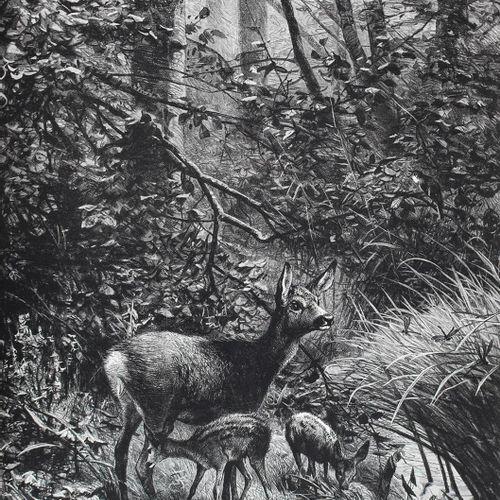 Corneli,R. Die Jagd und ihre Wandlungen in Wort und Bild.阿姆斯特丹,Ellermann(1884)。F…