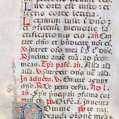 Missale. Double feuillet d'un manuscrit liturgique latin sur parchemin, écrit de…