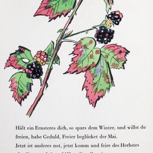 Schaefer Ast,A. (Illustr.). 成熟的果实和多彩的叶片。歌德、莱瑙、莫里克、吕克特等人的秋季诗歌,并配有手绘。达姆施塔特,手按约瑟夫 维…