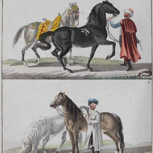 Bertuch,F.J. Livre d'images à l'usage et au plaisir des jeunes. 4 volumes de la …