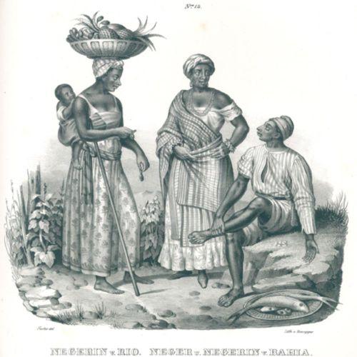 Schinz,H.R. Histoire naturelle et illustrations de l'homme des diverses races et…