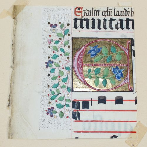 Antiphonar. Collection de quatre fragments d'une feuille d'antiphonaire avec des…