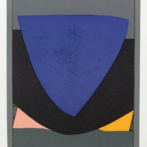 Butor,M. 八进制。Mchn., Bruckmann 1972. Fol.有9个标志。瓦萨雷利的彩色石板画原作,每幅画都附有1张灰色平纹纸的文字。灰色手工…