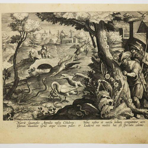 """STRADANUS Jan van der Straet, dit (d'après) (Bruges 1536 Florence 1605) """"Cigogne…"""
