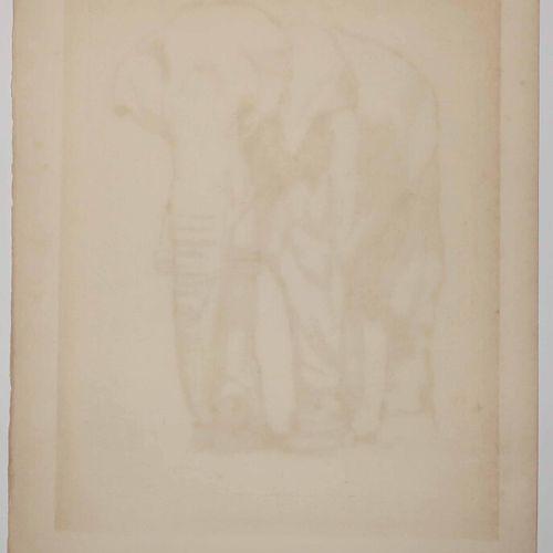 """JOUVE Paul (Marlotte (Seine et Marne) 1880 1973) """"Eléphant"""". Eau forte originale…"""