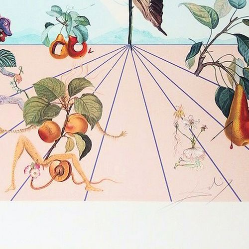 DALI Salvador (1904 1989) [Flordali II La rose papillon], 1981. Lithographie sur…