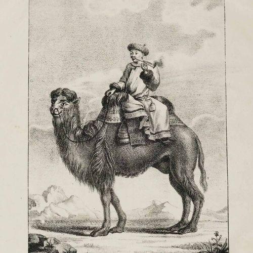 """CHINE """"ARACHI TAIDZI"""". 1826. Lithographie. Papier vélin. Planche 5 de la série """"…"""