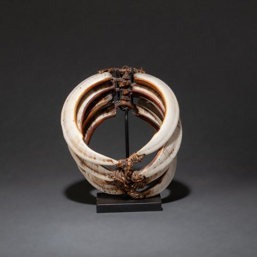 Ancien brassard de guerrier consisting of several pig's teeth arranged in cascad…