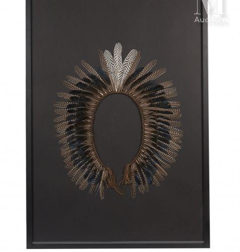 COIFFE AMÉRINDIENNE En plumes bleu moiré de faisan Lady de Amherst, trois plumes…