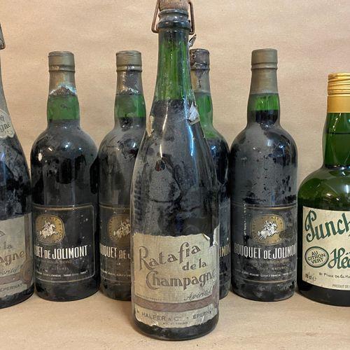 10 flacons DIVERS (3 Ratafia de la Champagne; 4 Bouquet de Jolimont; 1 Tokaji As…