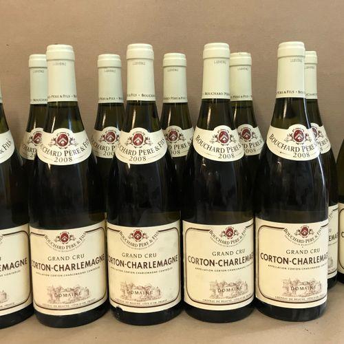 12 bouteilles CORTON CHARLEMAGNE, Bouchard P&F 2008 (étiquette légèrement tachée…