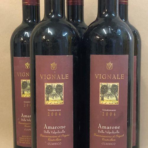 """5 bouteilles AMARONE DELLA VALPOLICELLA, """"Classico"""", Vignale 2004"""