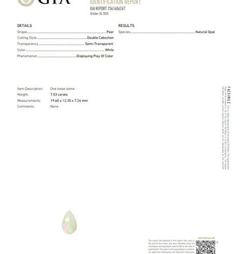 Opal pear cabochon on paper.  Accompanied by a GIA certificate dated 30/10/20.  …