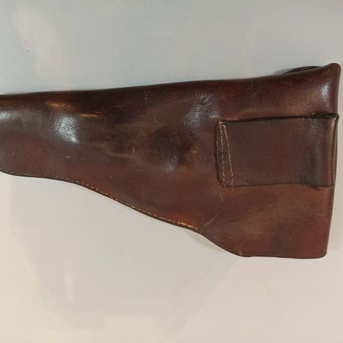 Pistol case style 45