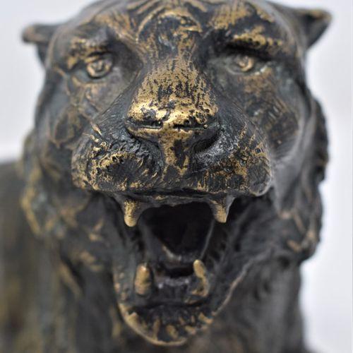 JAPON  Tigre en bronze à patine dorée  H.: 16 cm L.: 34 cm  Usures et oxydation …