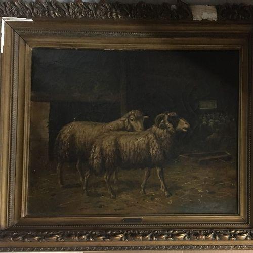 查尔斯(JACQUE),风格为  绵羊和公羊。  布面油画,右下角有天书题字  事故  56x70厘米。