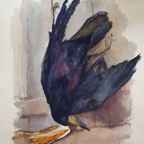GIRARD Louis Auguste (1896 1981)  Nature morte au corbeau  aquarelle signée en b…