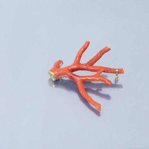 Branche de corail et débris d'or jaune ; ancienne broche.  Poinçon Hibou.  Poids…