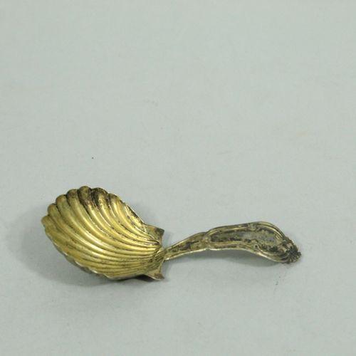Silver sugar scoop, shell shaped spoon.  Minerve hallmark.  Weight : 11.10 g.