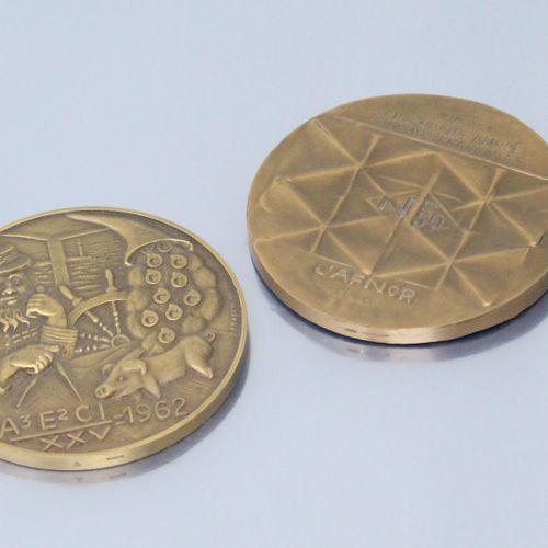 Deux médailles de table en bronze :   d'ap. Siv Holme, 1920 1970 / CINQUANTE ANS…