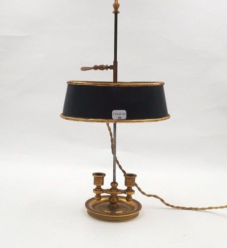 A mini lamp, electrified hot water bottle, lampshade in jail. H:32cm