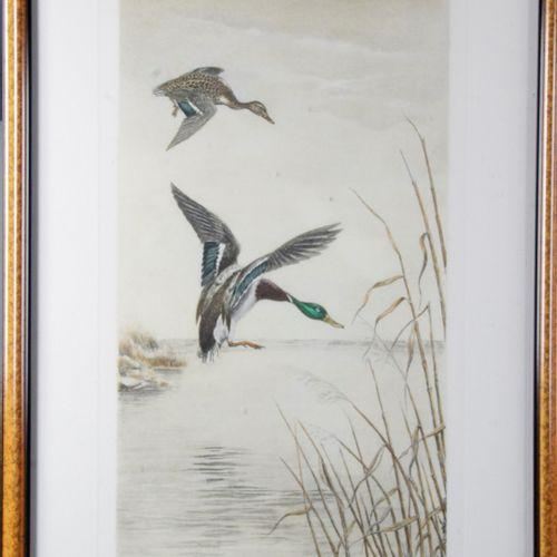 "Léon DANCHIN (1887 1938) ""Mallard ducks on the pond"" Colour engraving 74 x 48,5 …"