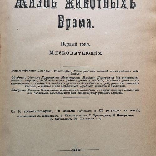 BREM A. (1829 1884)  La Vie des animaux. Edition illustrée en 3 Vols. Ed. « La R…