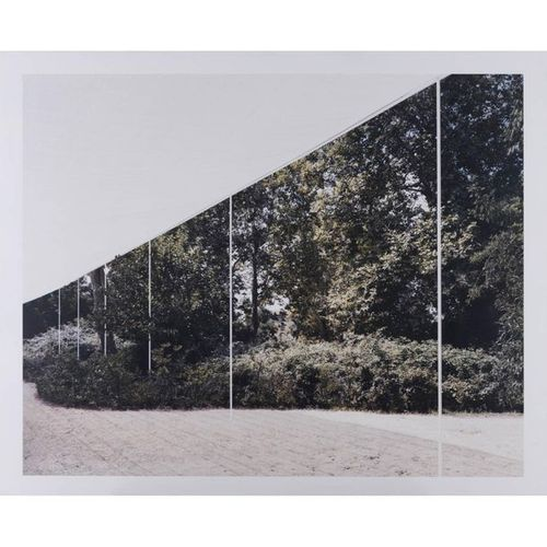 Bas Princen (born 1975)  Garden Pavilion, 2010  Color print laminated on white a…