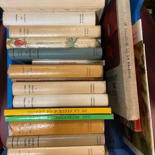Lot de livres, sujet ornithologie