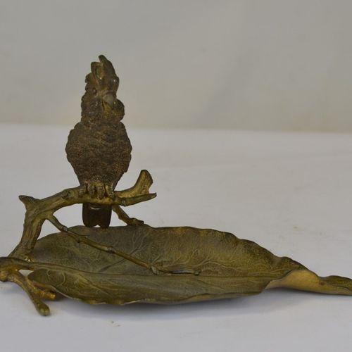 Bronze de Vienne à patine mordorée représentant un cacatoès perché sur une branc…