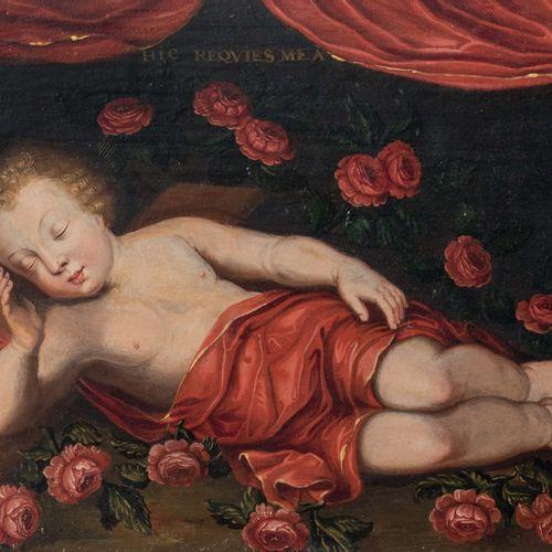 Ecole XVIIème siècle Enfant Jésus endormi Huile sur panneau 24,5 x 34 cm