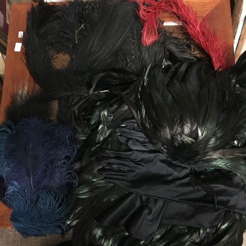 Large batch of ostrich feathers, various birds, dyed in different colors includi…