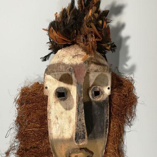 非洲。被称为芳族的人是征服性的战士,从18世纪到20世纪初入侵了喀麦隆和加蓬之间的广大地区。獠牙人物延续了社会身份,在恶劣的自然环境中生存,并与死者对话。高约4…