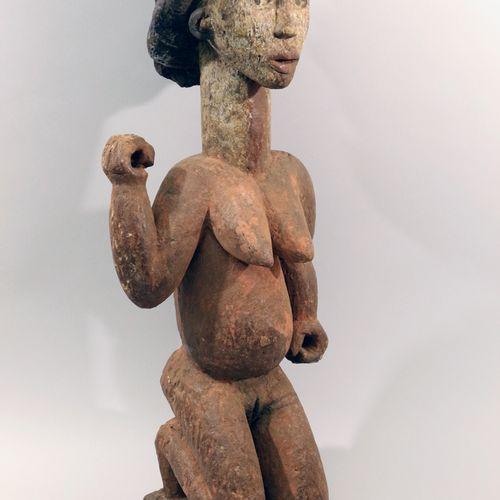 Afrique. Belle statuette PUNU LUMBO (Gabon). Dimensions : Hauteur approx. 70cm. …