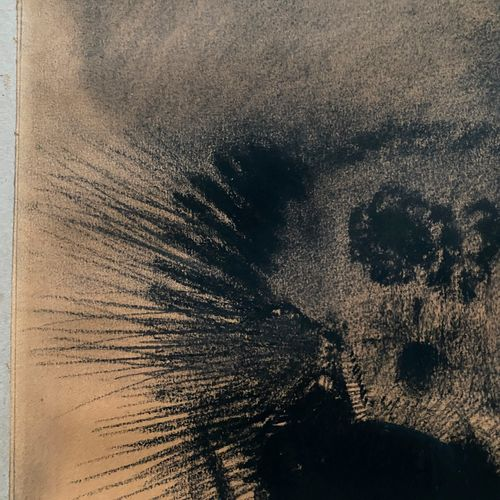 Odilon REDON (1840 1916) Visage cellulaire Dessin au fusain et à l'estompe signé…