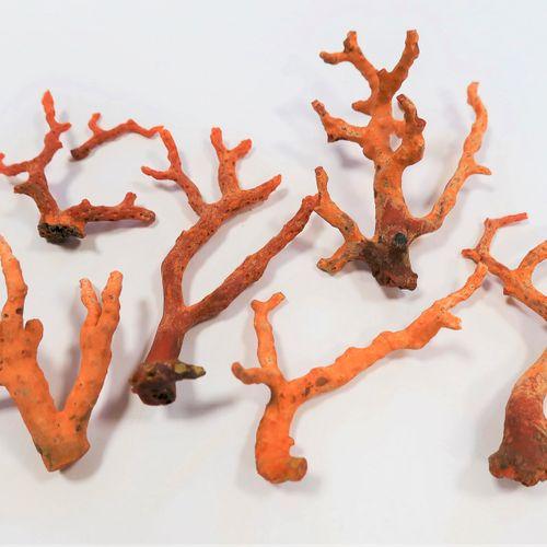 *Lot de 6 branches de corail au naturel.  Poids : 49 g