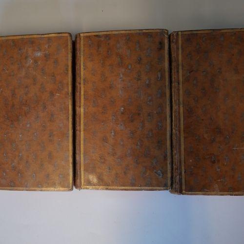 ANONYMOUS. Memoires particuliers pour servir l'histoire de France sous les règne…
