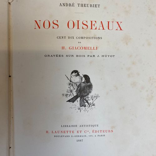 THEURIET, our birds, one hundred and ten compositions by GIACOMELLI. Paris 1887.…