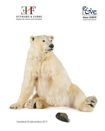 INSTRUMENTS SCIENTIFIQUES et MEDICAUX, PALEONTOLOGIE, METEORITE, HISTOIRE NATURELLE, BRONZES ANIMALIERS & ARTS PREMIERS