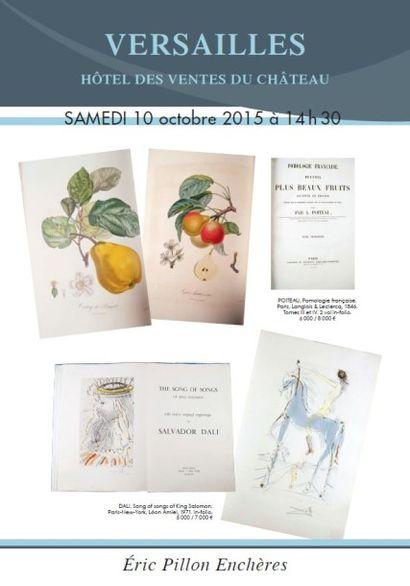 Livres anciens et XIXe (thème du cheval) - illustrés modernes - manuscrits - cartes postales - photos