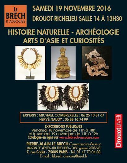 archéologie, histoire naturelle, art d'Asie, objets de curiosités