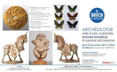 ARCHEOLOGIE, ARTS D'ASIE, OBJETS DE CURIOSITES ET SCIENCES NATURELLES
