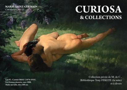 vente CURIOSA & COLLECTIONS Online