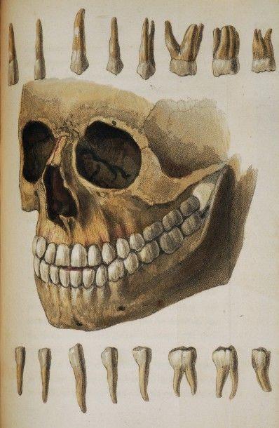 Livres anciens et modernes, Sciences, Optique, Médecine