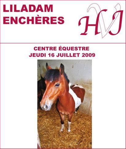 Vente judiciaire - Centre Equestre