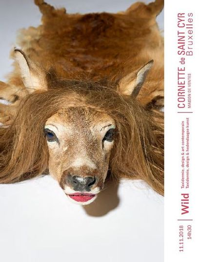 Vente WILD - Taxidermie, design et art contemporain