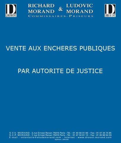 Ventes judiciaires