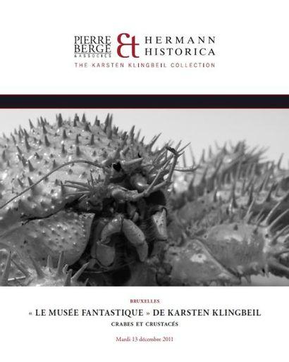 """""""Le fantastique musée"""" de Karsten Klingbeil crabes et crustacés"""